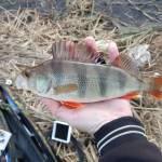 Истра река, карта, рыбалка