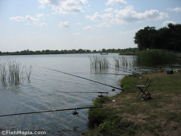 ставки для рыбалки в луганской области