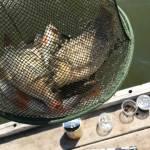 новотроицкий, карта, рыбалка