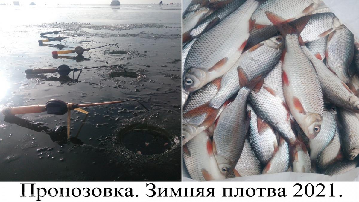 Пронозовка, карта, рыбалка