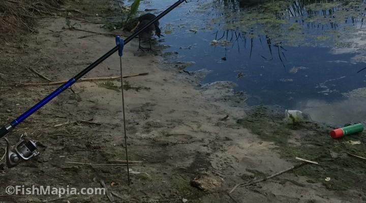 Лысогорка, карта, рыбалка
