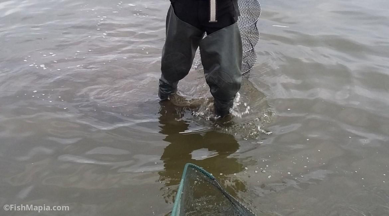 Отрадное, карта, рыбалка