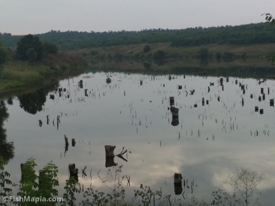Закорчеваный Покровка, карта, рыбалка